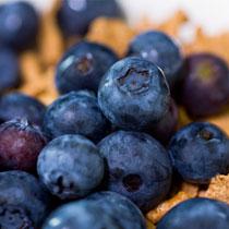 蓝莓的做法大全