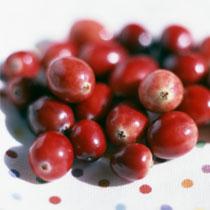 蔓越莓的做法大全