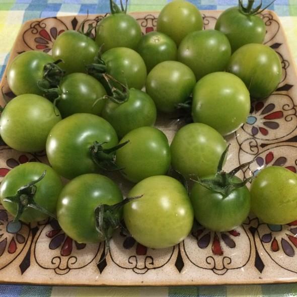 手绘绿西红柿