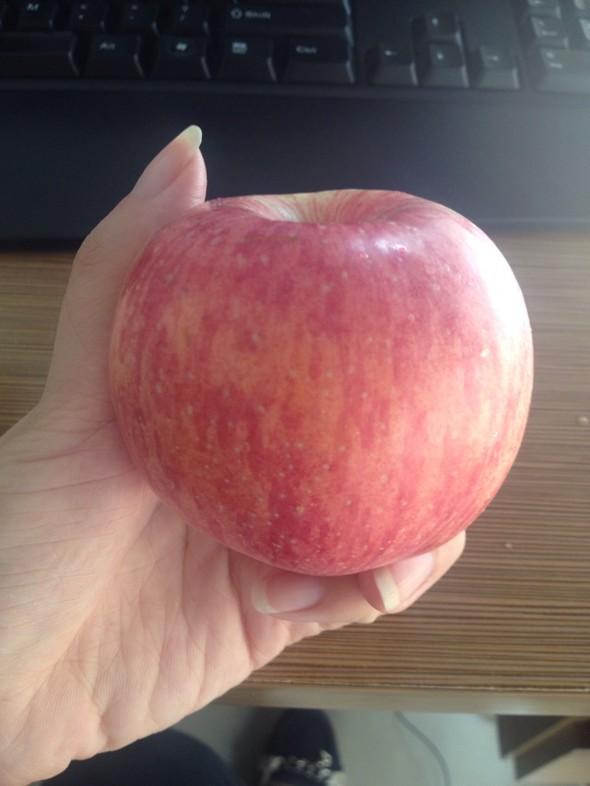 苹果c壁纸可爱