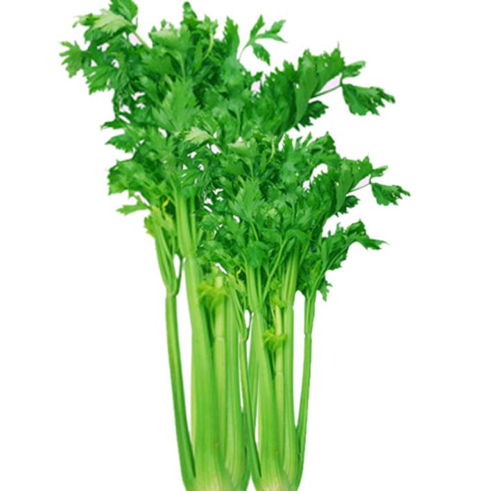 芹菜的做法【图像】