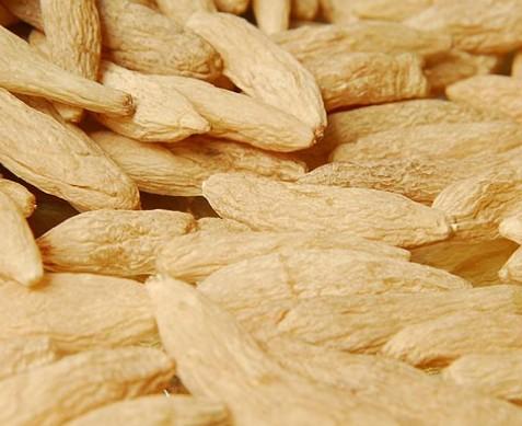麦冬的做法大全