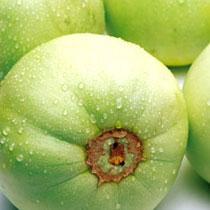 香瓜的做法大全