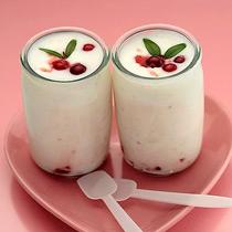 酸奶的做法大全