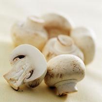 草菇的做法大全