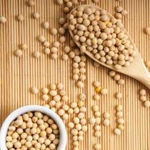 黄豆的做法大全