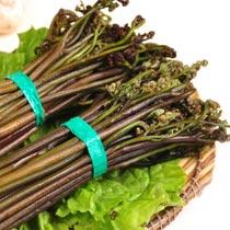 蕨菜的做法大全