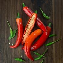 辣椒的做法大全