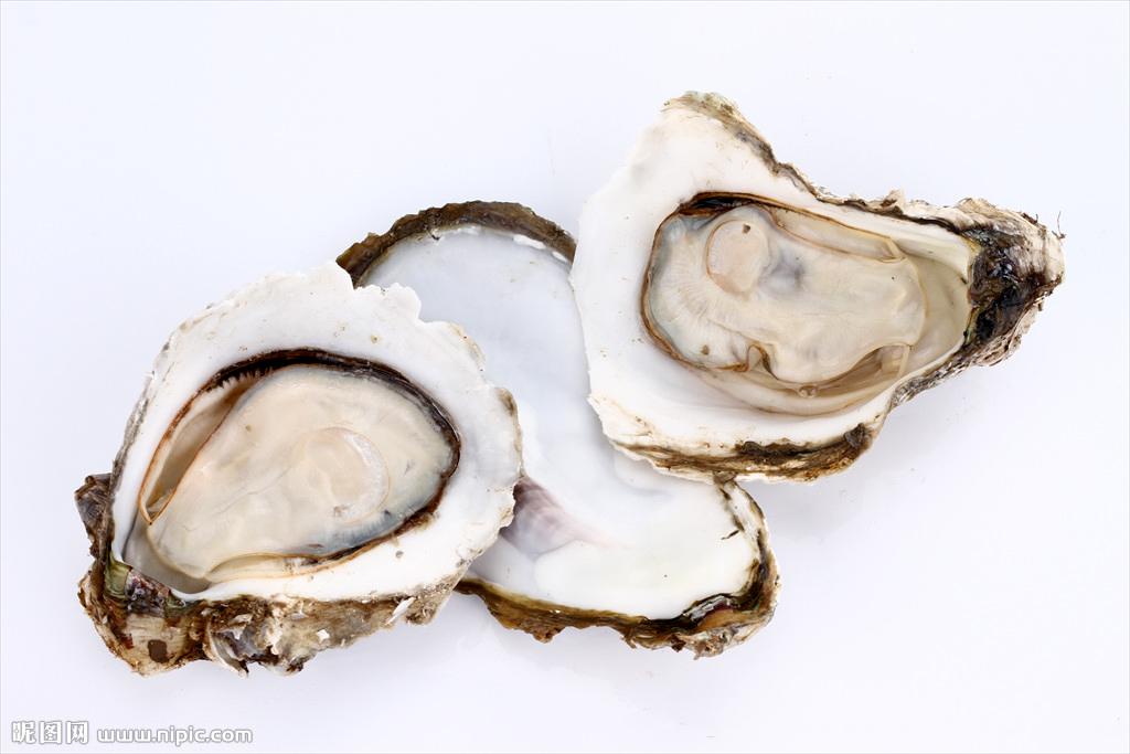 牡蛎的做法大全